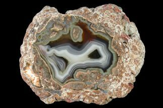 Chalcedony var. Agate & Quartz - Fossils For Sale - #145644