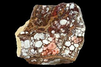 Magnesite & Hematite - Fossils For Sale - #146442