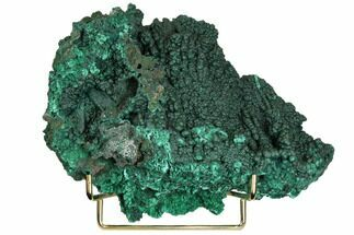 "9.9"" Sparkling Botryoidal Malachite Formation - Congo For Sale, #148241"