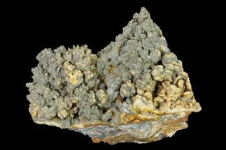 Barite & Pyrite - Fossils For Sale - #148326