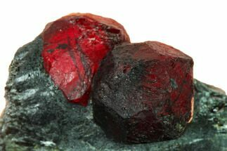 Garnet var. Almandine & Graphite - Fossils For Sale - #147864