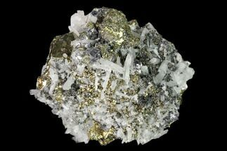 Chalcopyrite, Pyrite, Galena & Quartz - Fossils For Sale - #149583