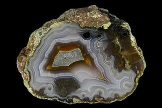 Chalcedony var. Agate - Fossils For Sale - #150510