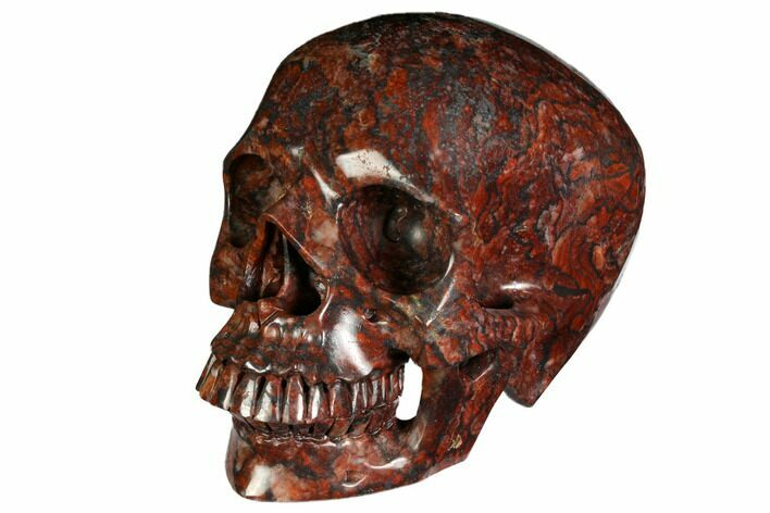 "7"" Realistic, Polished Red Picture Jasper Skull"