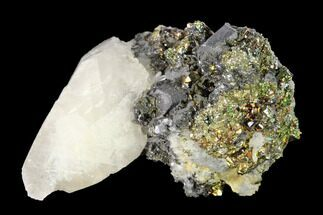 "1.55"" Iridescent Chalcopyrite, Calcite and Galena Association - Peru For Sale, #149702"