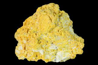 "1.02"" Yellow Orpiment - Crven Dol Mine, Macedonia For Sale, #153332"