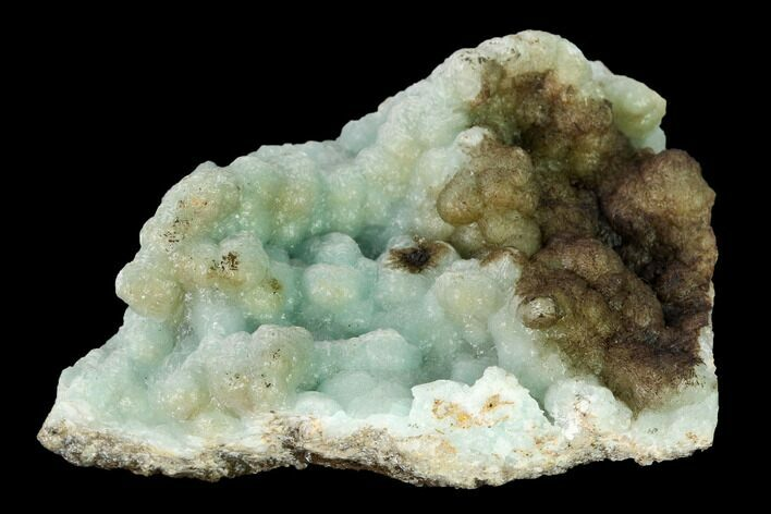 "2.2"" Powder Blue Hemimorphite Formation - 79 Mine, Arizona"