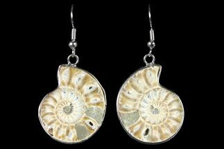 Fossil Ammonite Earrings - 110 Million Years Old For Sale, #152012