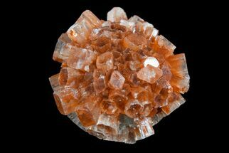 Aragonite - Fossils For Sale - #153798