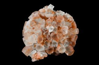 Aragonite - Fossils For Sale - #153837