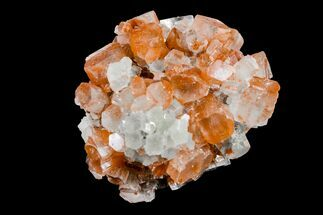 Aragonite - Fossils For Sale - #153813