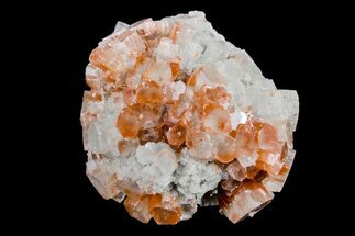 Aragonite - Fossils For Sale - #153825