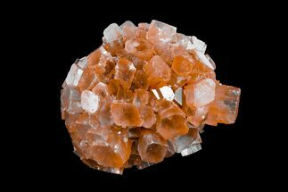 Aragonite - Fossils For Sale - #153855