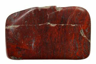 "Buy 1.55"" Polished Stromatolite (Collenia) - Minnesota - #155590"