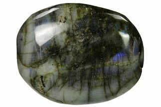 Labradorite - Fossils For Sale - #155685