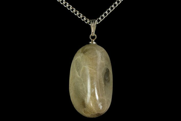 Polished Petoskey Stone (Fossil Coral) Necklace - Michigan