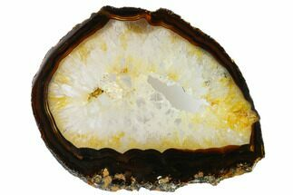 "7"" Polished Brazilian Agate Slice For Sale, #156302"