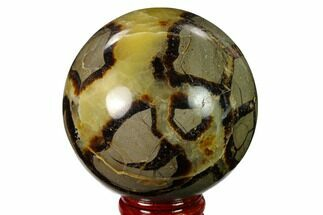"2.6"" Polished Septarian Sphere - Madagascar For Sale, #154136"