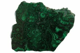 Malachite - Fossils For Sale - #157260