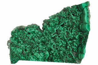 "5.5"" Polished Malachite Slab - Congo For Sale, #157262"