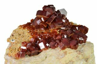 "Buy 2.2"" Deep Red Vanadinite Crystal Cluster - Morocco - #157033"