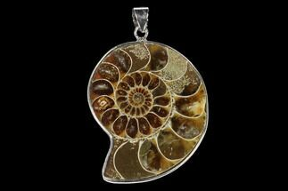 "1.45"" Fossil Ammonite Pendant - 110 Million Years Old For Sale, #151982"