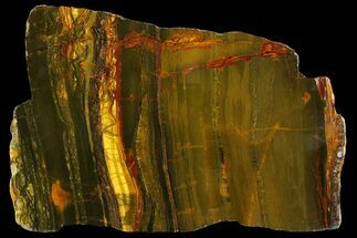 "Buy 10.7"" Polished ""Packsaddle"" Tiger Eye Slab - Western Australia - #158173"