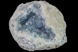 Celestine (Celestite) - Fossils For Sale - #156507