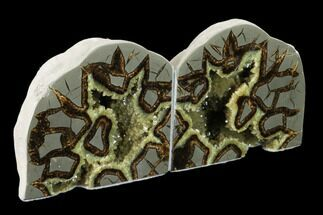 "5.3"" Wide, Crystal Filled Septarian Geode Bookends - Utah For Sale, #160166"