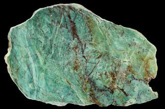 "Buy 9.1"" Polished Fuchsite Chert (Dragon Stone) Slab - Australia - #160363"