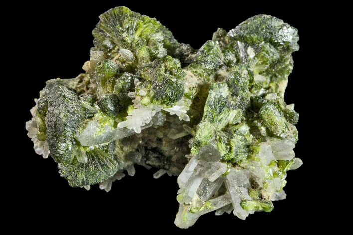 "1.5"" Lustrous Epidote with Quartz Crystals - Morocco"