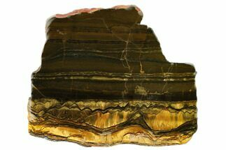 "Buy 6.3"" Polished ""Packsaddle"" Tiger Eye Slab - Western Australia - #161974"