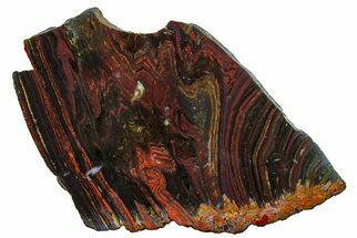 Tiger Iron - Fossils For Sale - #162006
