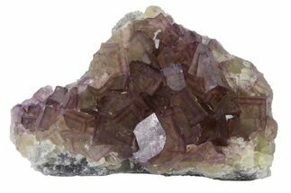 "Buy 3.8"" Cubic Purple Fluorite with Phantoms - Yaogangxian Mine - #162013"