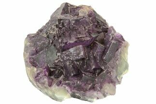 Fluorite - Fossils For Sale - #163242