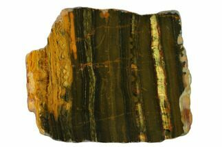 "9"" Polished ""Packsaddle"" Tiger Eye Slab - Western Australia For Sale, #163118"