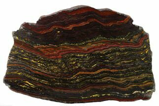 "9.9"" Polished Tiger Iron ""Stromatolite"" Slab - 3.02 Billion Years For Sale, #163115"