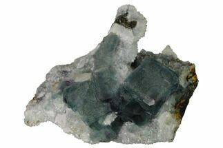 Fluorite & Quartz - Fossils For Sale - #164019