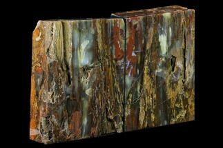 "Buy 7.2"" Tall, Arizona Petrified Wood Bookends - Red & Orange - #166084"