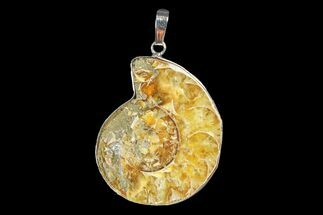 "Buy 1.4"" Fossil Ammonite Pendant - 110 Million Years Old - #166123"