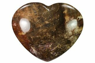 "Buy 4.5"" Polished Triassic Petrified Wood Heart - Madagascar - #139987"