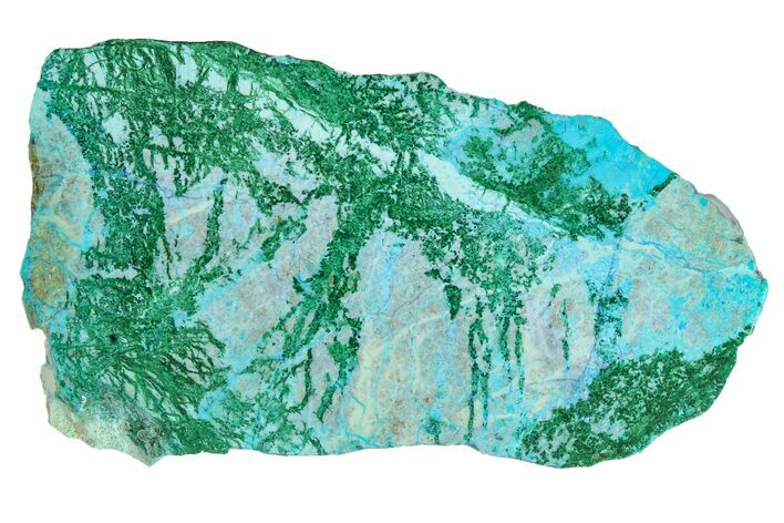 "4.1"" Polished Blue River Chrysocolla Slice - Arizona"