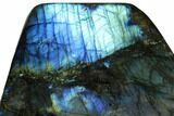 "4.2"" Flashy, Polished Labradorite Free Form - Madagascar - #167109-2"