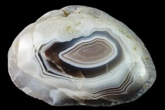 "2.1"" Polished Botswana Agate Nodule - Botswana, Africa For Sale, #167594"