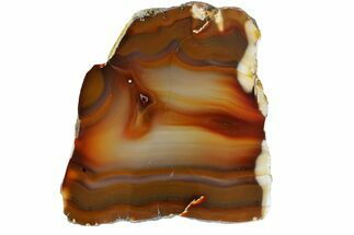 Chalcedony var. Agate - Fossils For Sale - #167505