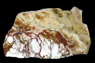Magnesite & Hematite - Fossils For Sale - #167409