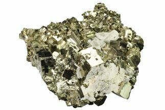 "Buy 3.6"" Shiny, Cubic Pyrite Crystal Cluster with Quartz - Peru - #167728"