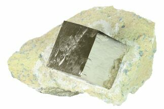 "Buy Large, 1.5"" Natural Pyrite Cube In Rock - Navajun, Spain - #168511"
