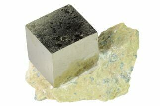 Pyrite - Fossils For Sale - #168495