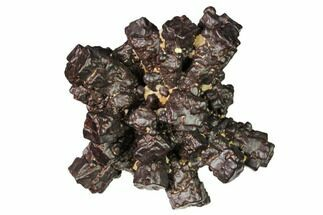 Goethite  - Fossils For Sale - #168537
